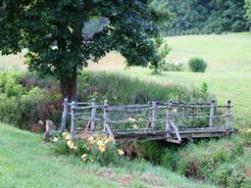 Bridge over creek in spring