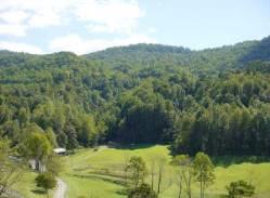Chestnut Mountain cove