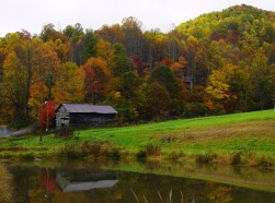 Chestnut Mountain Cabin fall scene