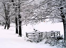 Chestnut Mountain cabin winter